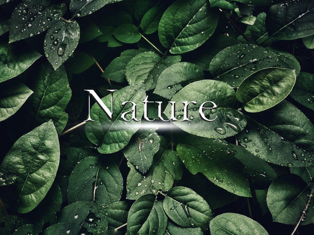 Nature_Genre.jpg