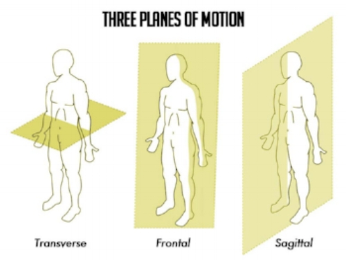 Planes-of-Motion1.jpg