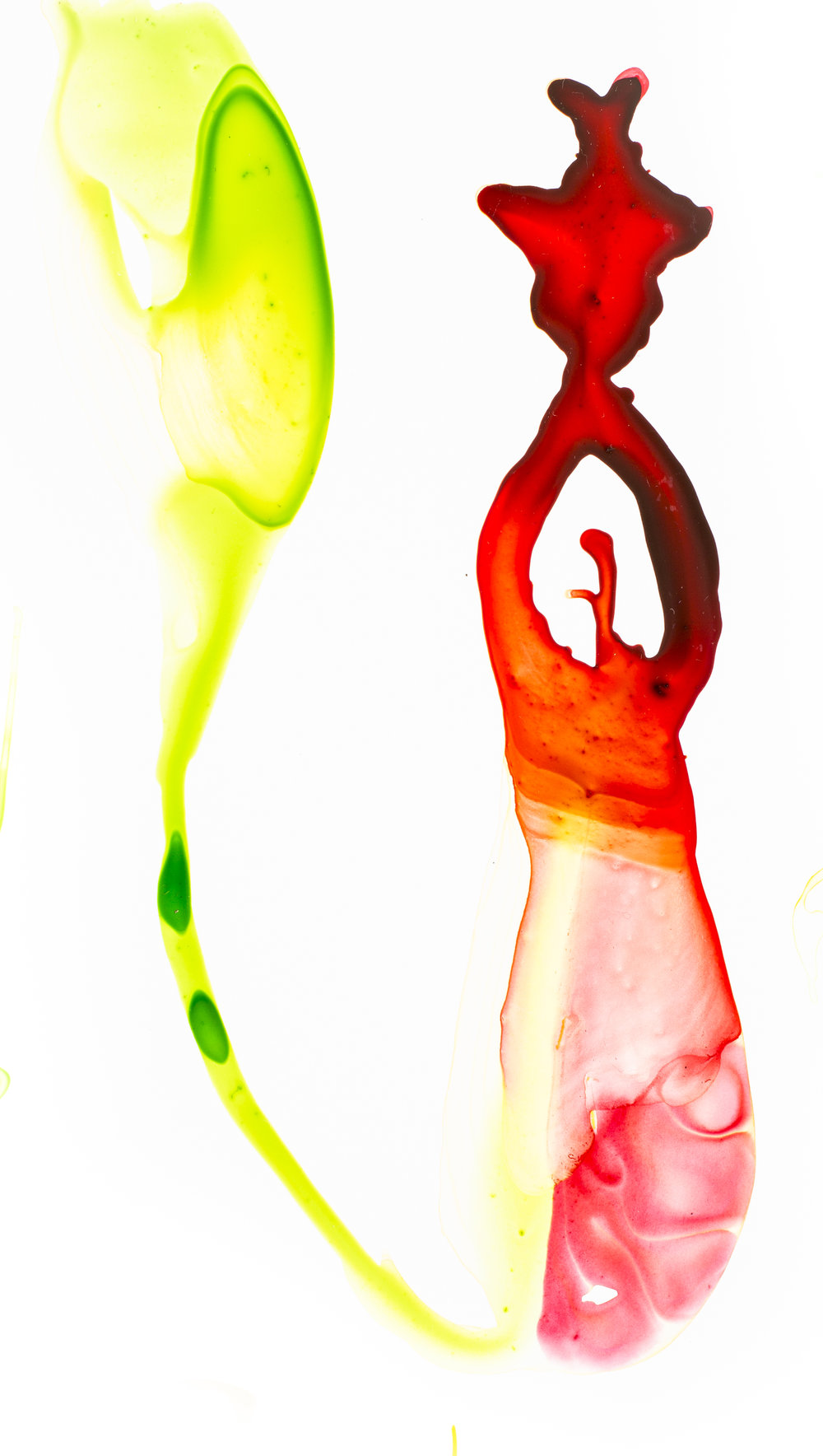 Velvet Pitcher Plant_Alexis Rockman.jpg