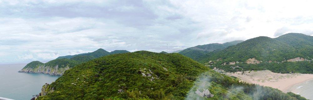Coastal dry forest landscape.
