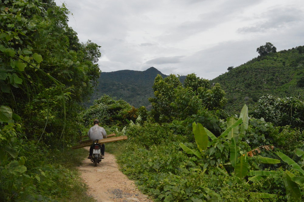 Illegal logging in Van Ninh.