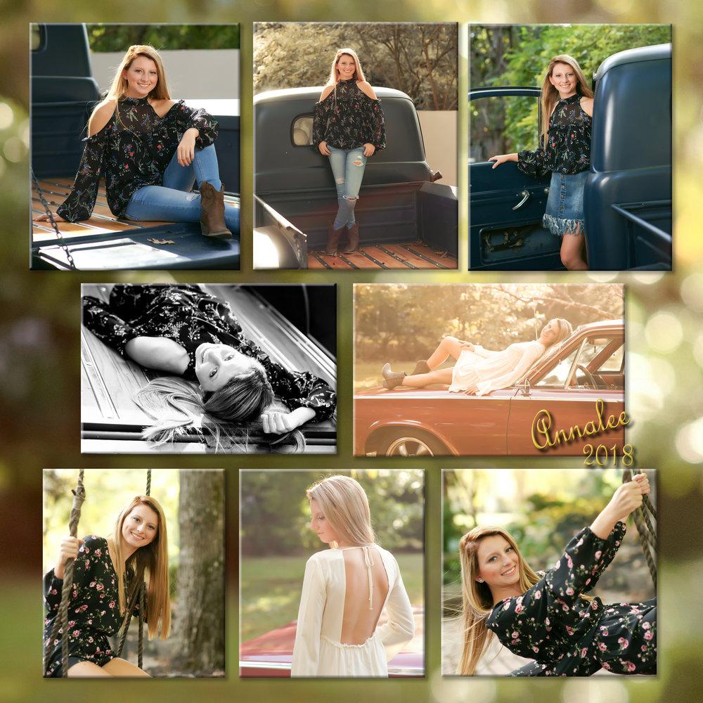 Annalee Collage.jpg
