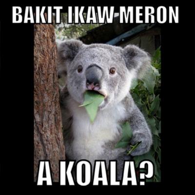 Ako wala = A koala.