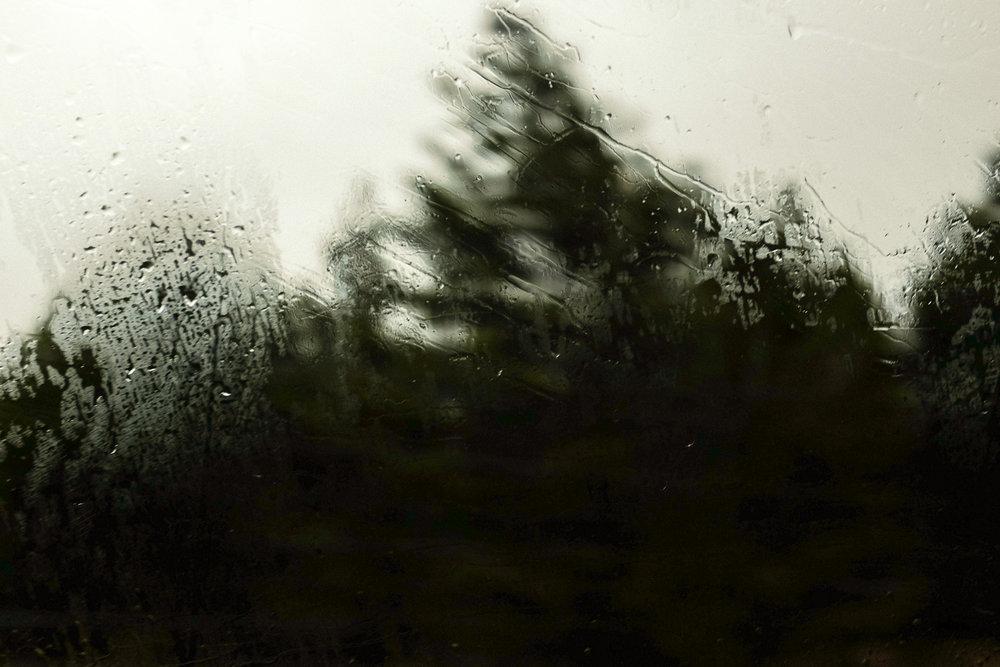ashley-watson-through-the-glass-6.jpg
