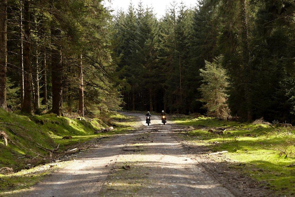ashley-watson_dartmoor-4.jpg