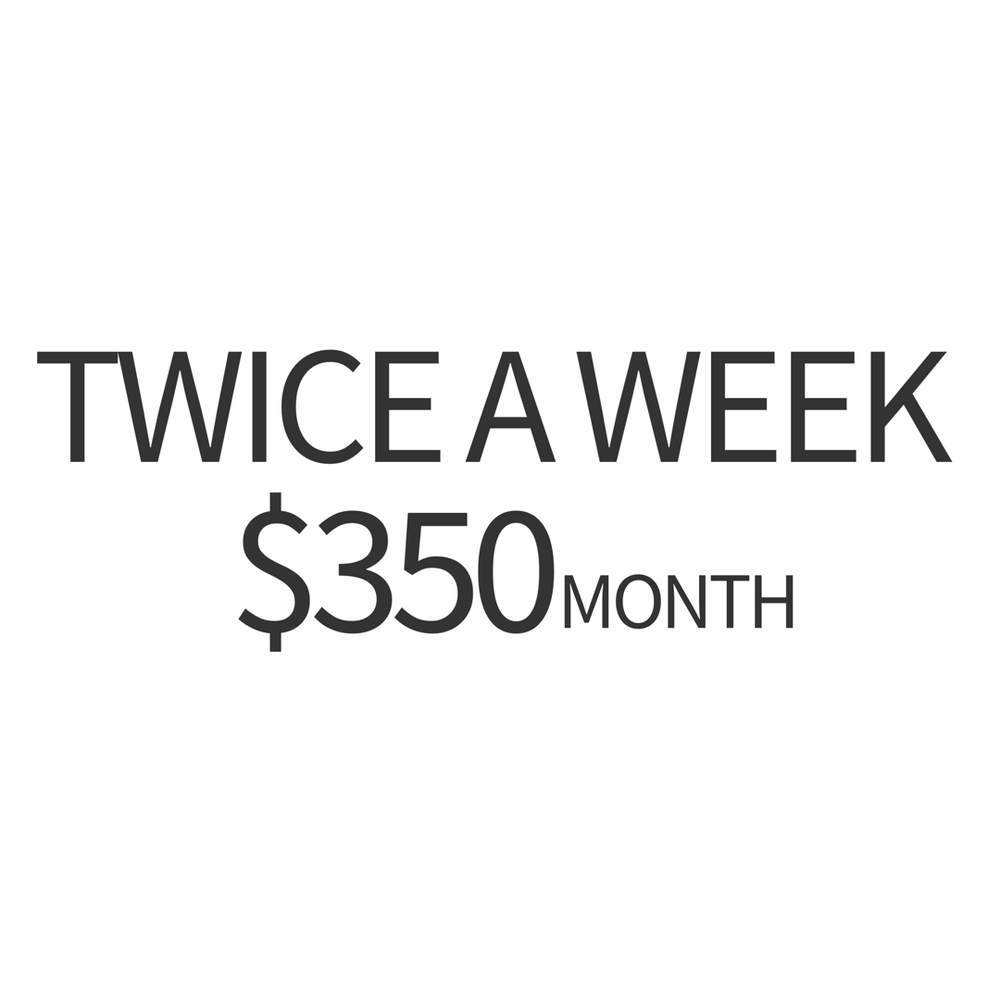 twice a week.PNG