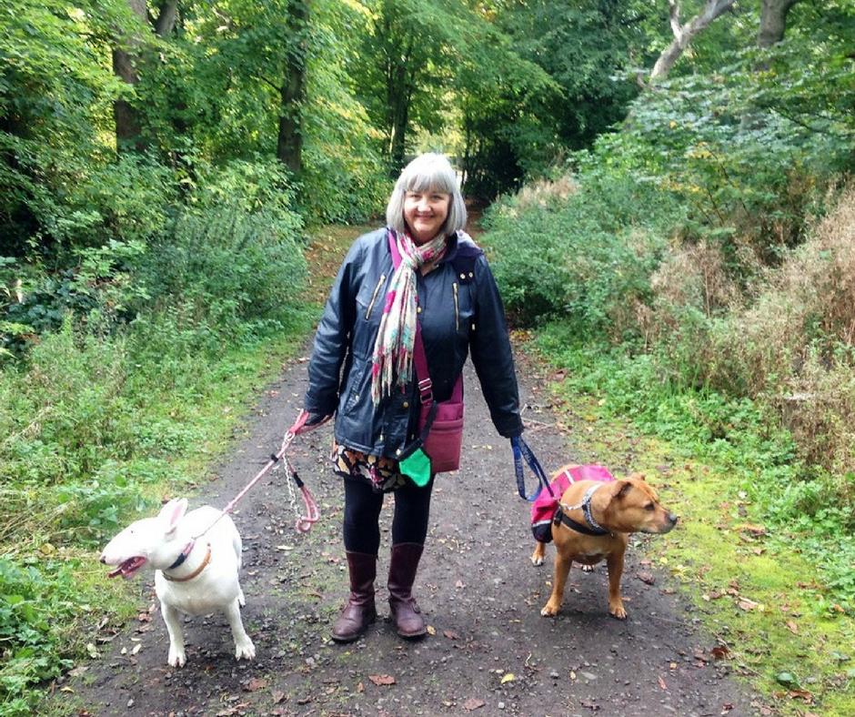Edinburgh behaviour modification - dog walk through woods