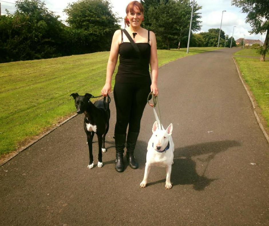 Edinburgh dog leash training - Dogs on a walk