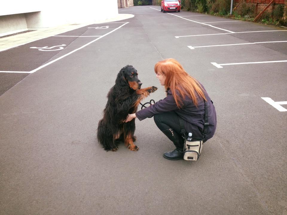 Edinburgh Shaggy Dog - Dog training