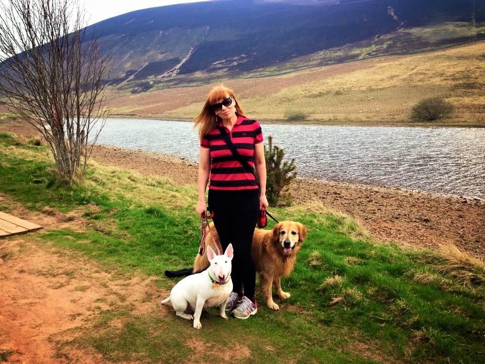 Dog behaviour training Edinburgh - dog walk