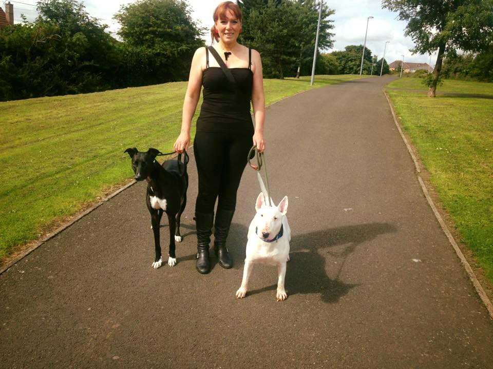 Dog behaviour training in Edinburgh - Teaching dogs to walk on leash