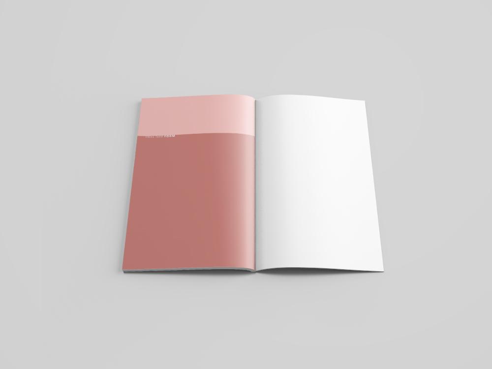 Notebook_spreads6.jpg