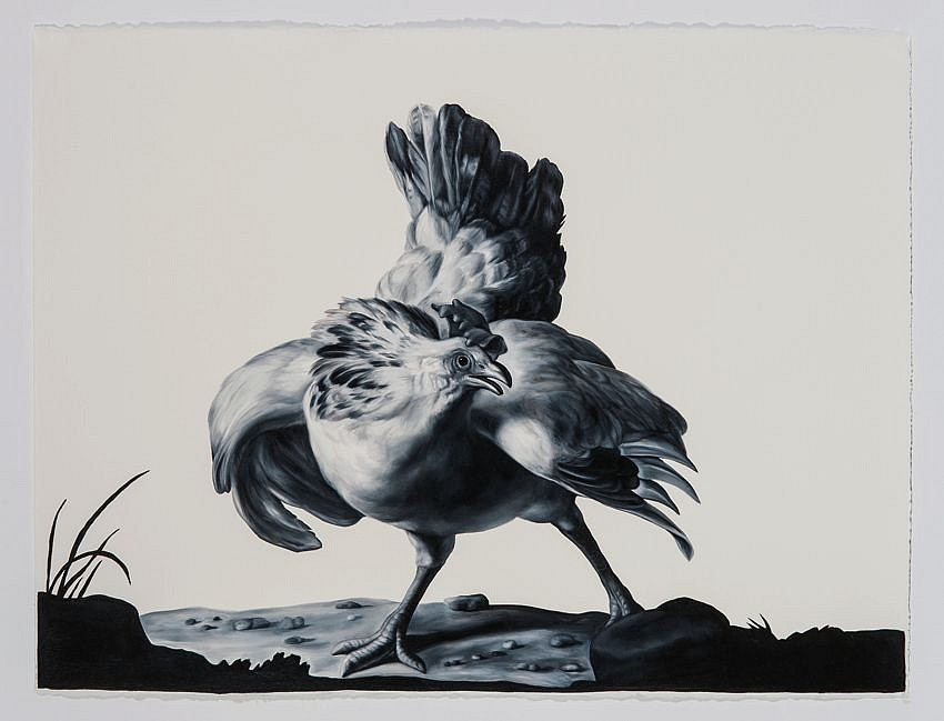 Hen (after Hondecoeter)