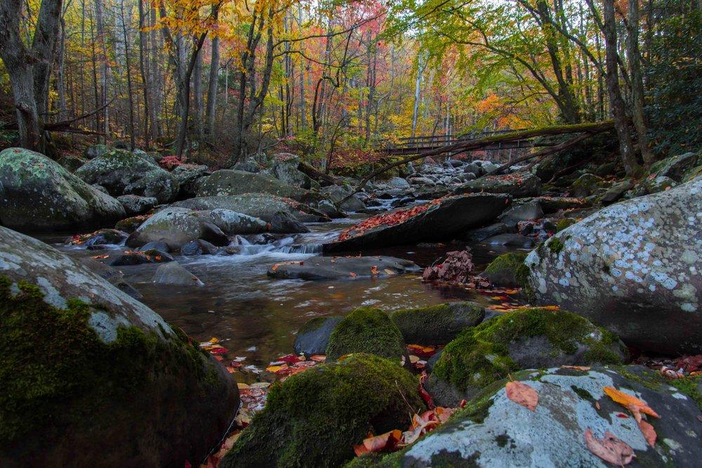 Smoky Mountains National Park, USA