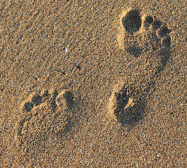 footprints in sand 366x329.jpg