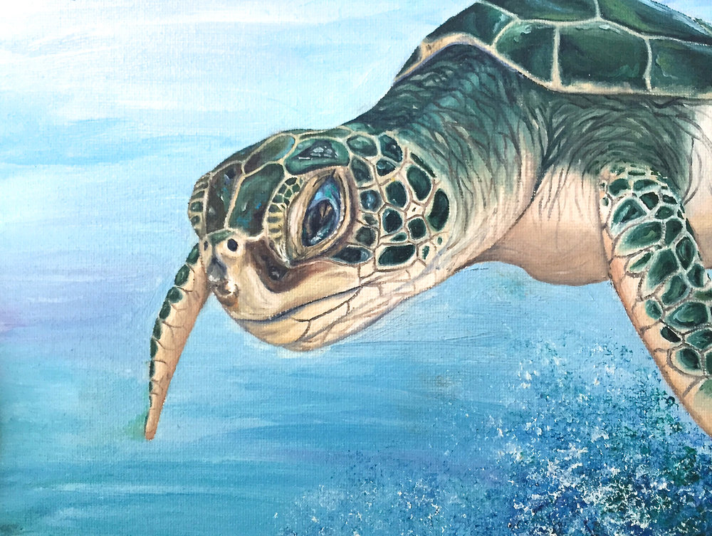 "Haley's Turtle, 10""x8"", Oil Paint on Canvas, 2012"