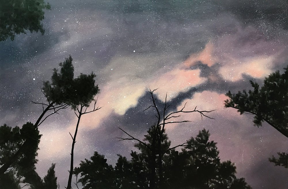 "Red River Gorge Night Sky, 36""x24"", Oil Paint on Canvas, 2017"