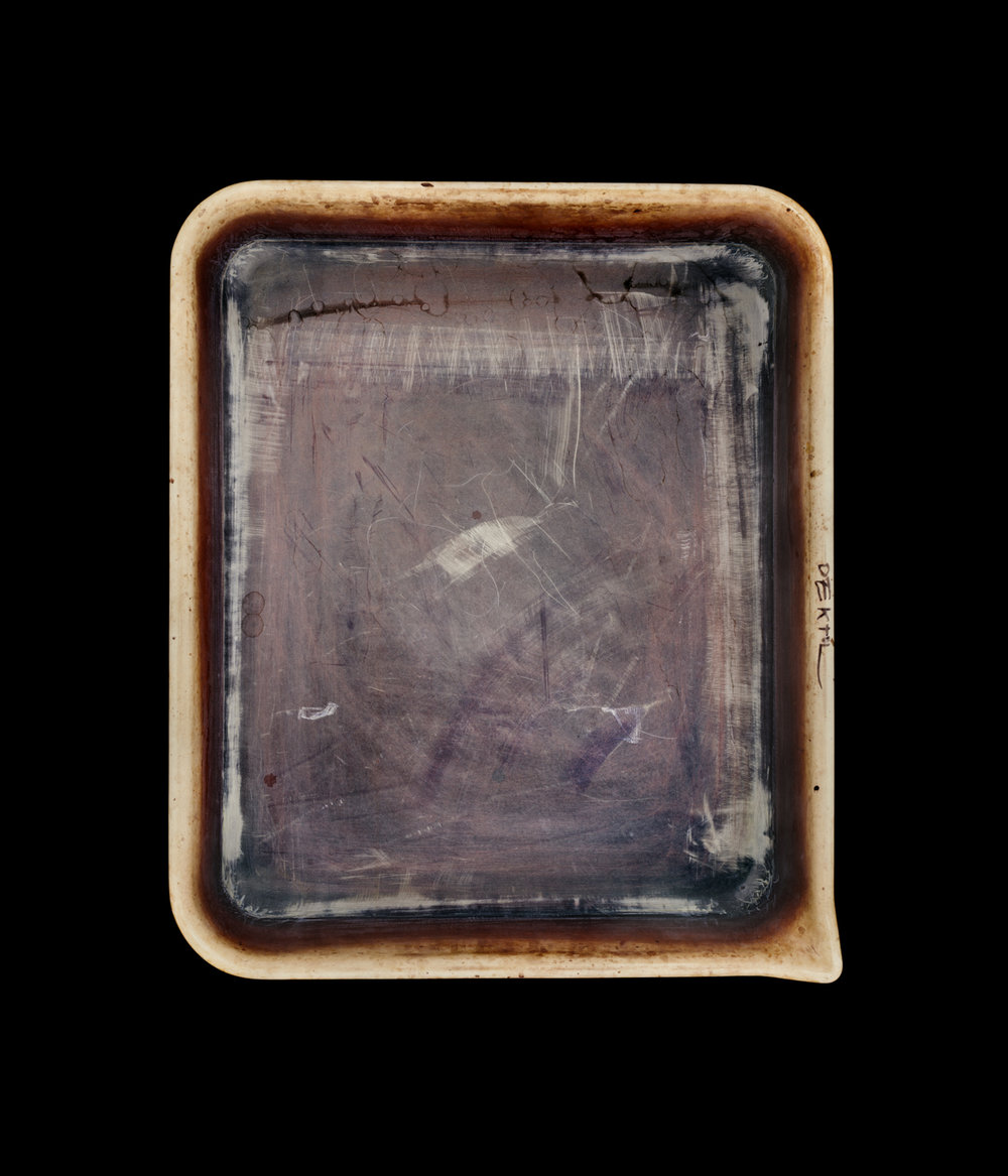 Emmet Gowin's Developer Tray, 2010