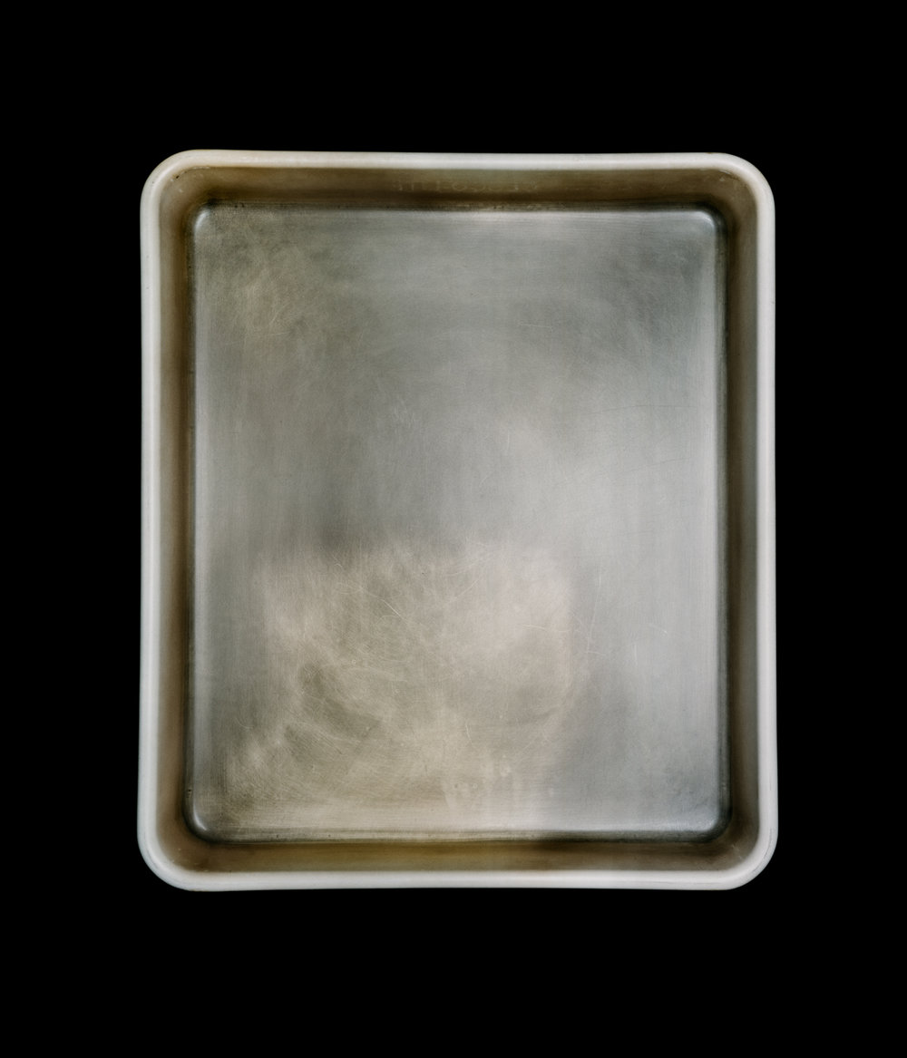 Stanley Greenberg's Developer Tray, 2010