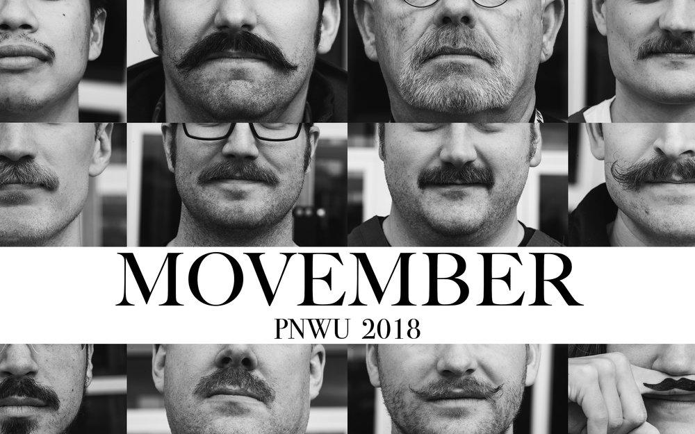 movember book cover.jpg