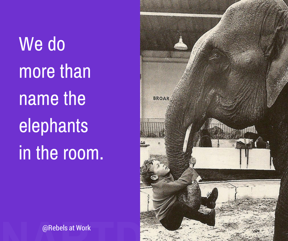 超过大象jpeg