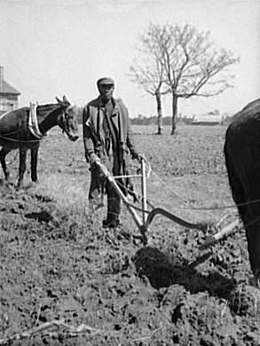 Sharecropper_plowing_loc.jpg