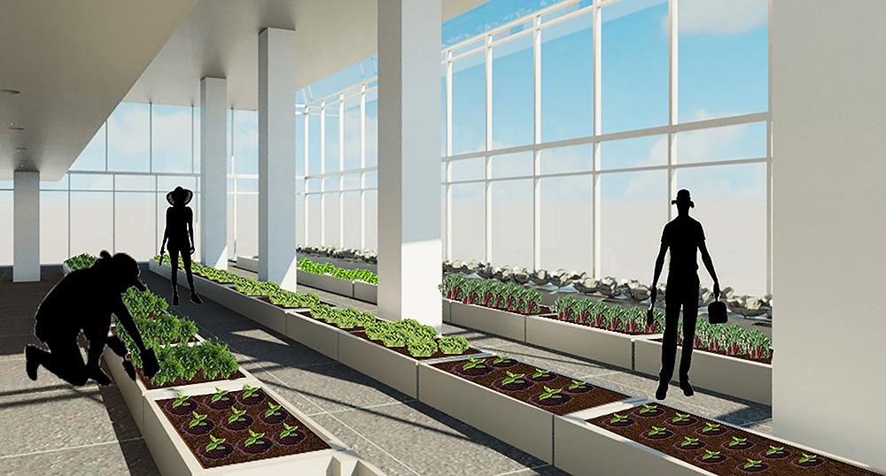 danielle-gallardo-terrace-housing_26937750836_o.jpg