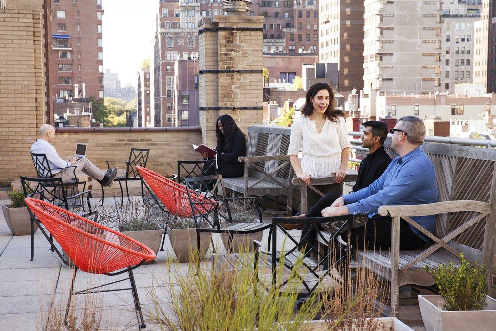 rooftop-garden_40028271625_o[1].jpg