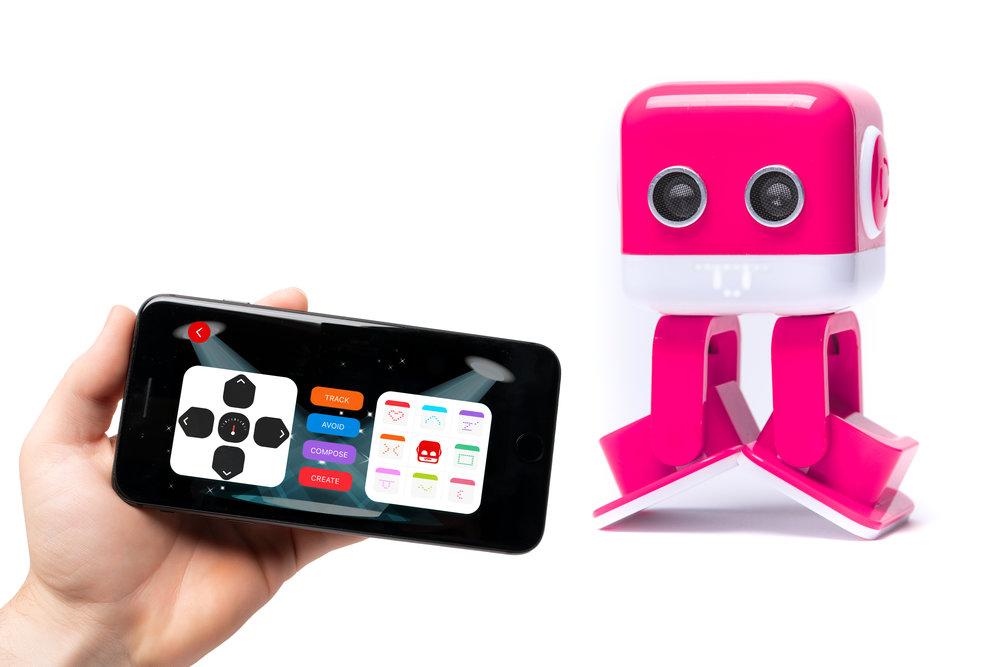DJ Bot with App (5).jpg