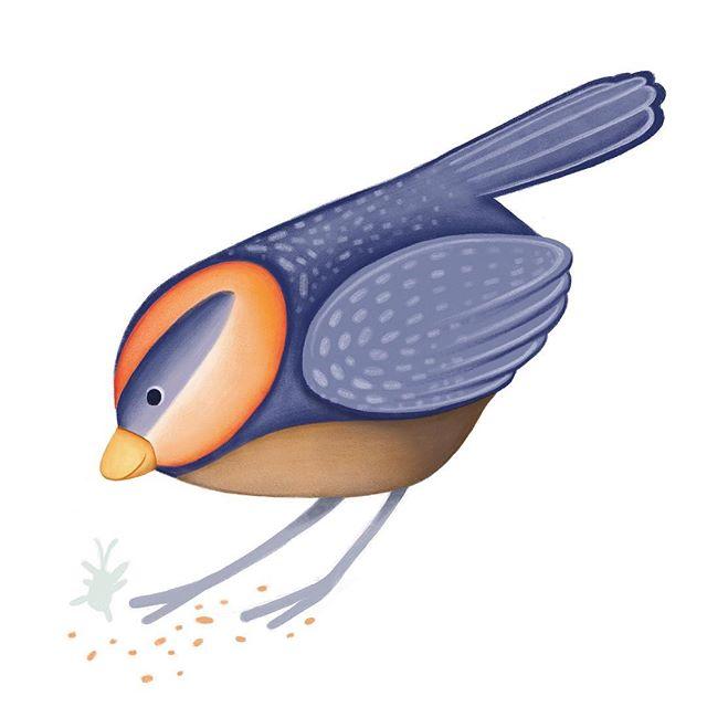 This is loosely based upon nature. I love to see birds with brightly colored caps... it always gets my attention! . . . . . #illustrations #illustrator #picturebookillustration #natureartwork #birddrawing #animalart #cuteanimals #bird #birdcharacter #surfacedesign #surfacedesigner #illustratorsoninstagram #drawing #drawingsketch #sketch #sketcbook #nurseryideas #boynurserydecor #kidlitart #kcartist #kansascity #bethsnider #bethsniderart #freelance #procreate #applepencilart