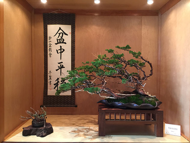 Courtesy of Baikoen Bonsai Kai