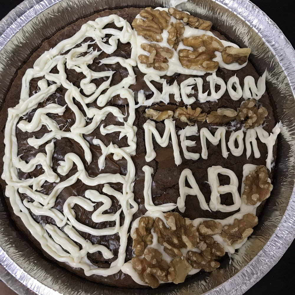 Our lab had a delicious cookie exchange this week to celebrate the end of the term. There was some very creative baking happening! When science and food and fun collide!