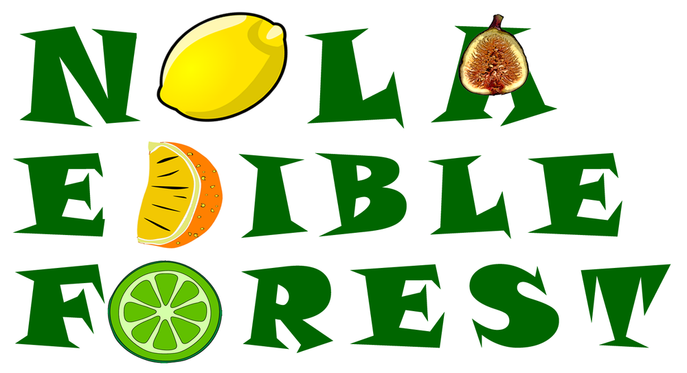 logo Edible Forest.png
