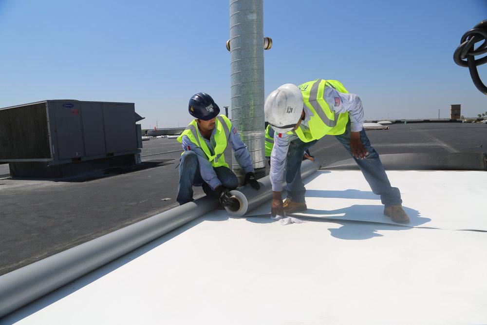 TPO-Membrane-RoofingServices.jpg