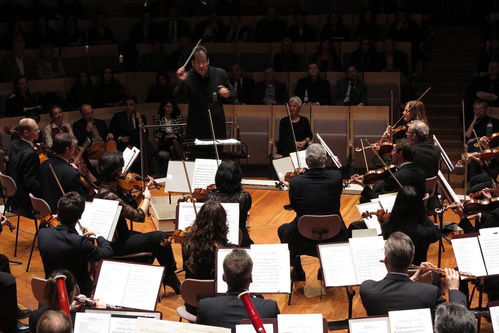 De frente en Philharmonie.JPG