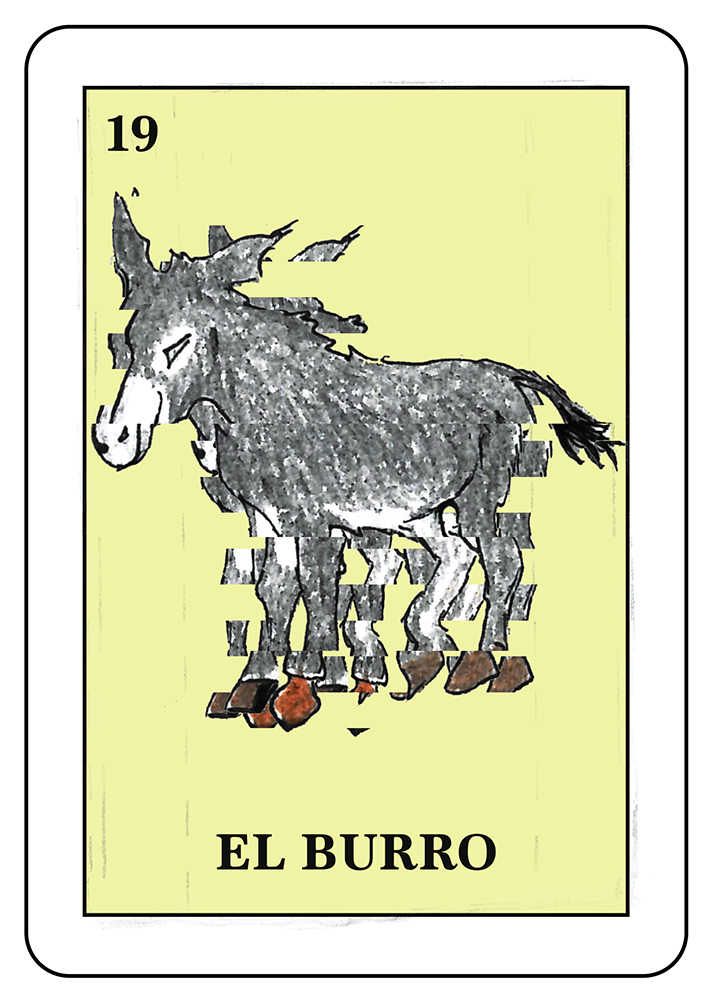 El Burro: The Donkey
