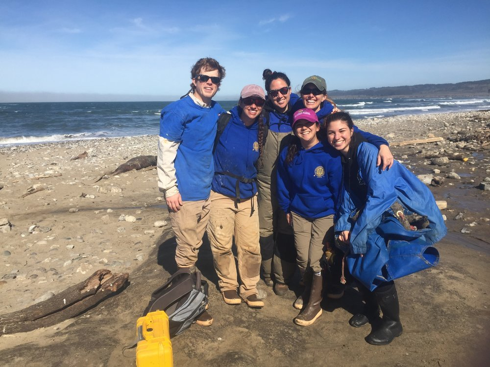 Marine Mammal Science Camp - Become the next generation of marine mammal biologists