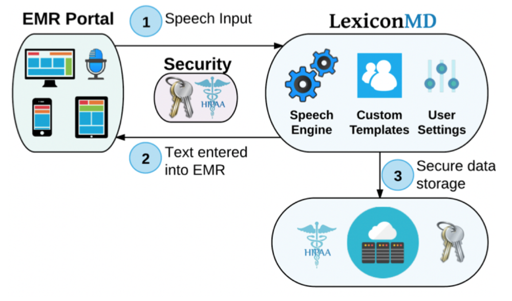 LexiconAI Platform