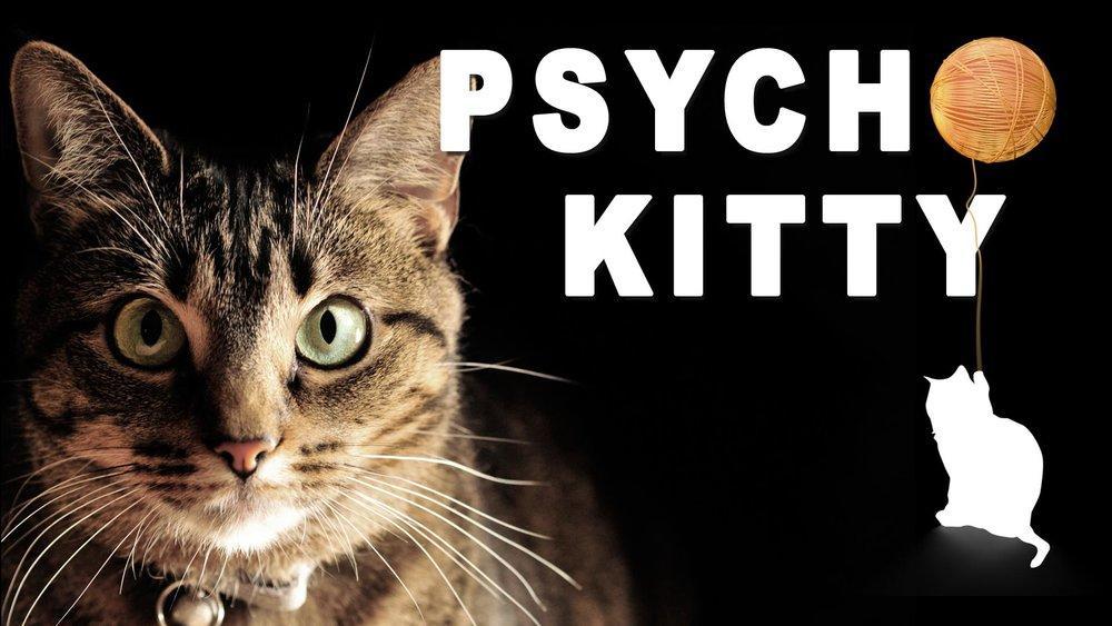 PSYCHO KITTY -