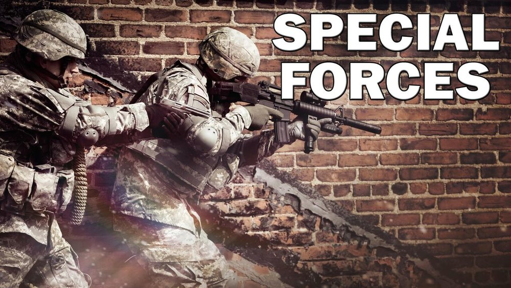 Modern Warfare: Special Forces  -