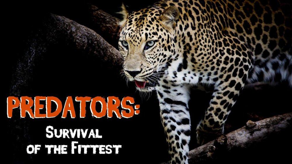 Predators: Survival of the Fittest -
