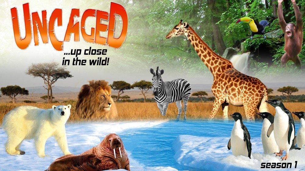 Uncaged -