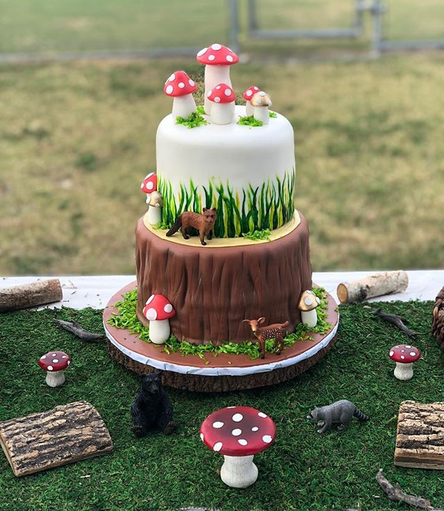 Loved making this log/outdoor inspired cake for one of our customers. #logcake #mushrooms #outdoorscake
