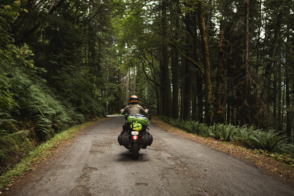 Olympic National Park Motorcycle Rides on The Lost Latitudes Blog. Shot by Preston Burroughs. Story by Leticia Cline