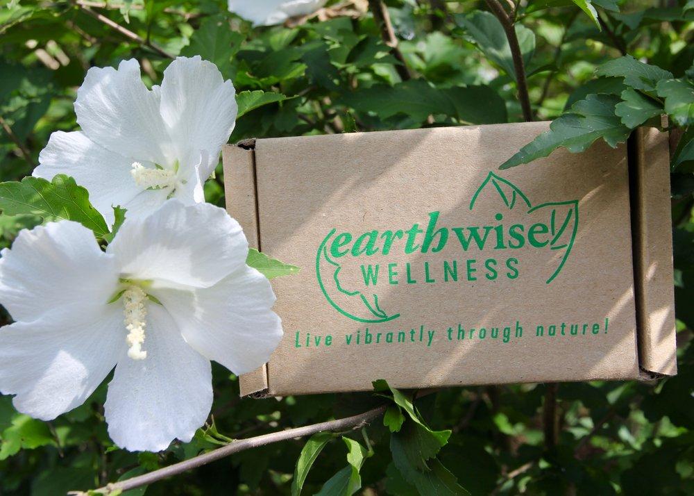 sustainableshippingbox