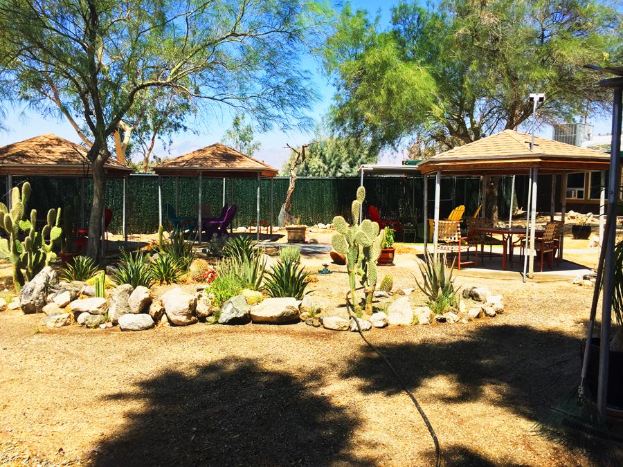 Outdoor cactus gardens