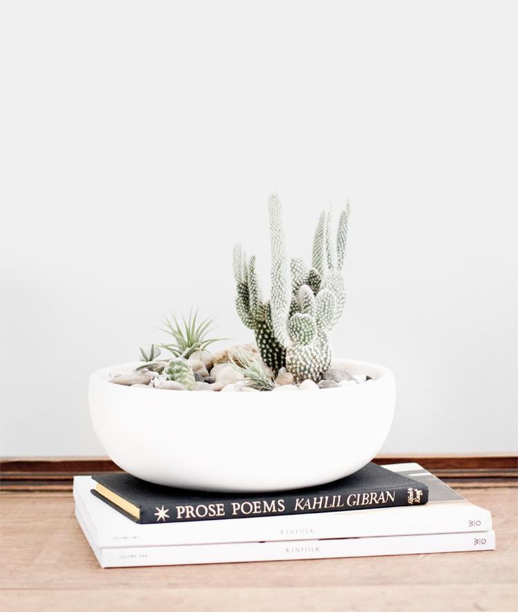 plants_4.jpg