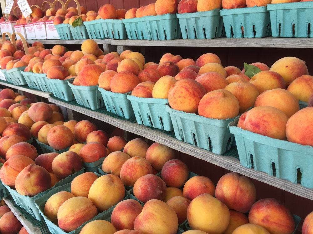 The smell of these peaches at a local farm was incredible!