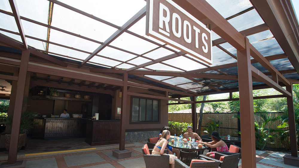 ROOTS RESTAURANT, ORGANIC, LOCALLY SOURCED FARE