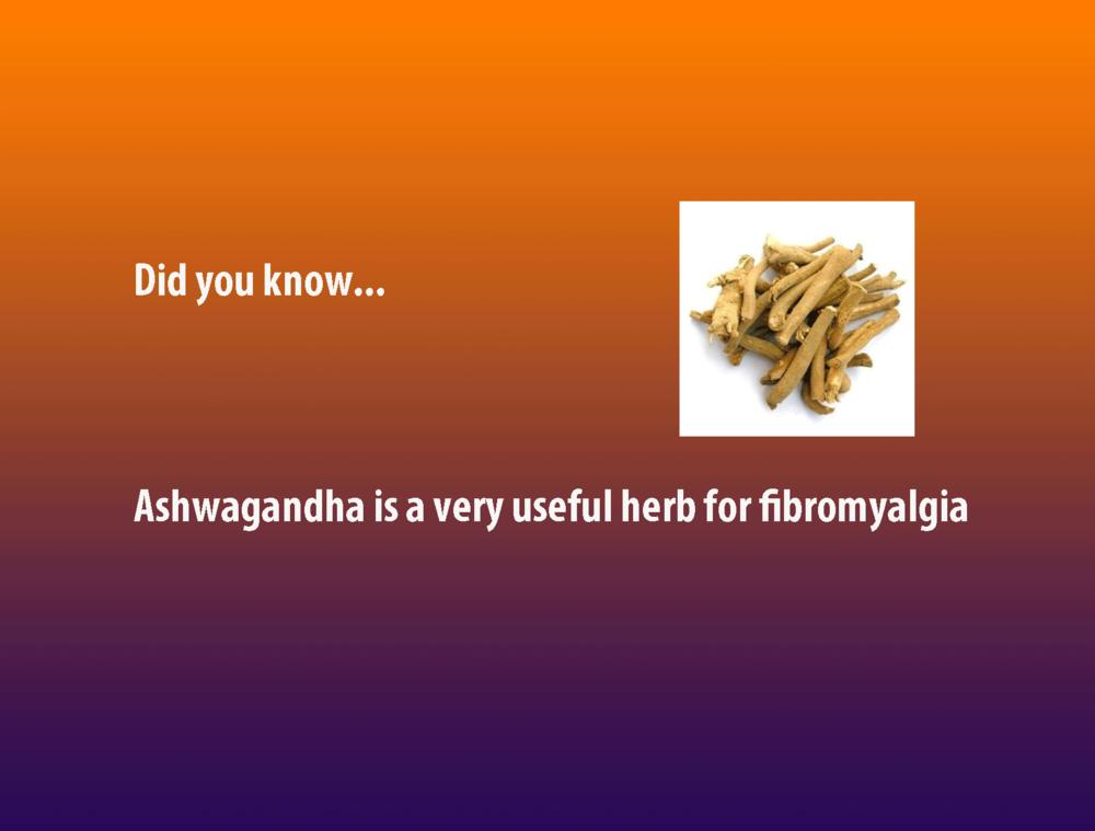 ashwagandha-fibromyalgia.png